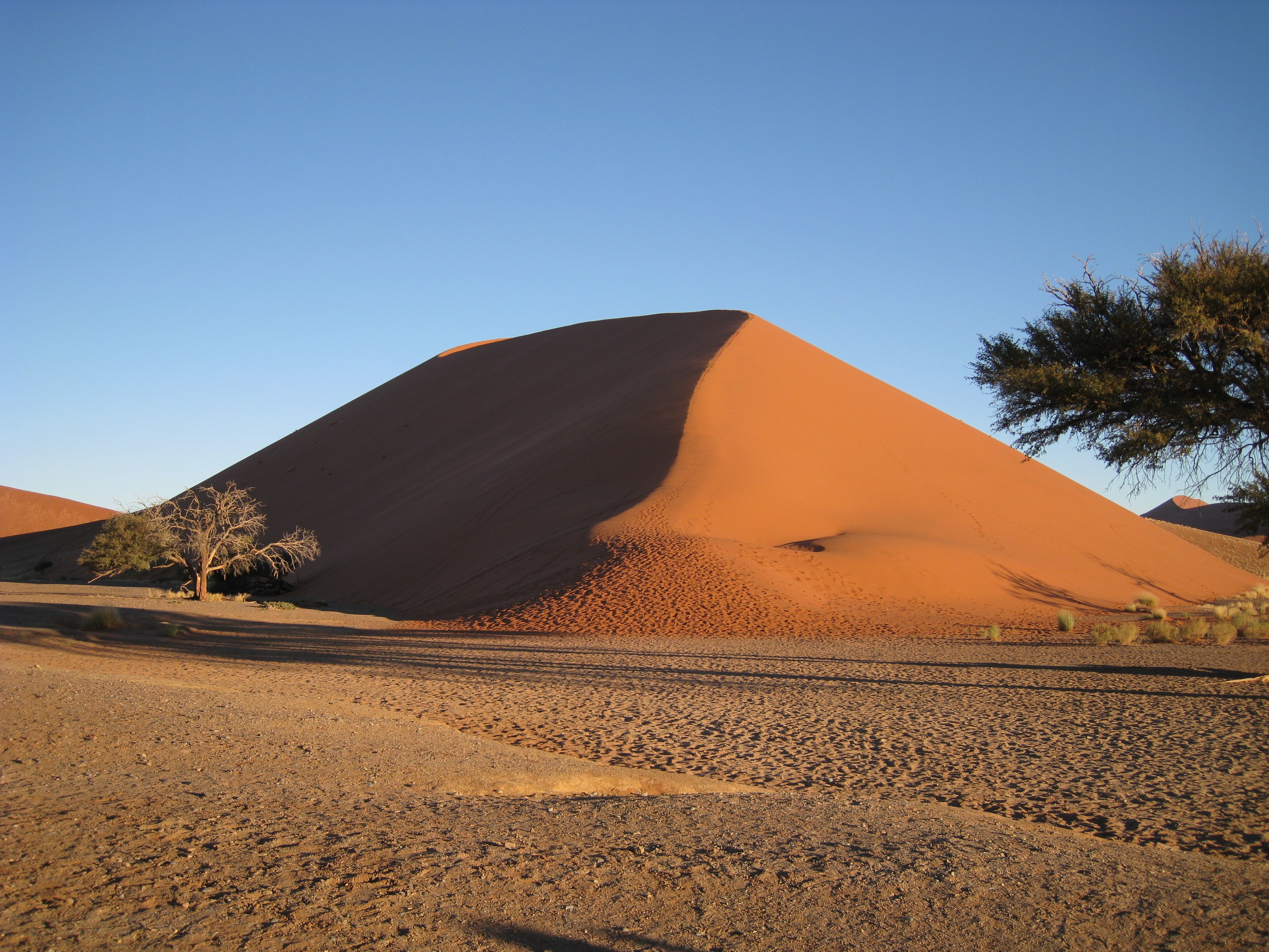 What is the dune: the meaning of the word, interesting facts and photos 79